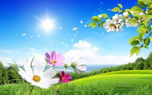 primavera-3